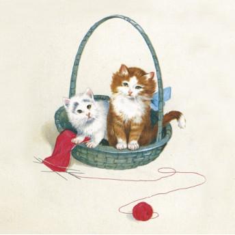Postcard square cat's basket
