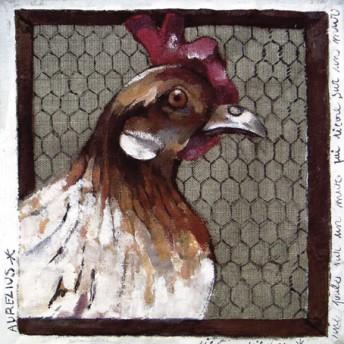 Postcard square the chicken