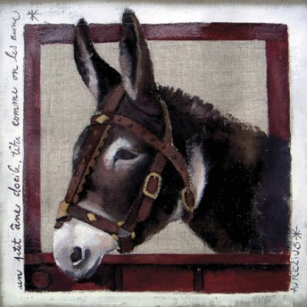 Postcard square the donkey