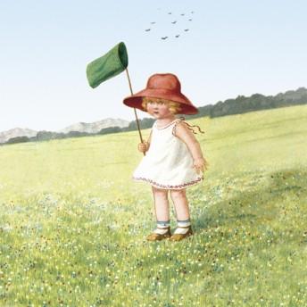 Postcard sqaure chasing butterflies