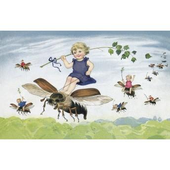 Postcard beetles
