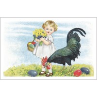 Postcard the rooster