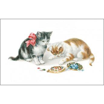 Postcard cats chocolate