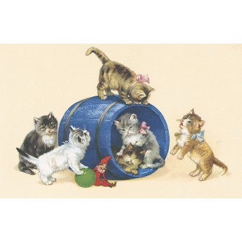 Postcard cats blue barrel
