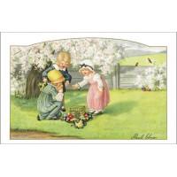 Postcard cherry blossom