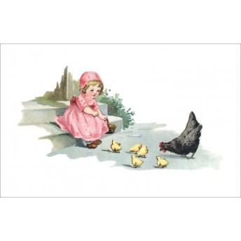Postcard hen