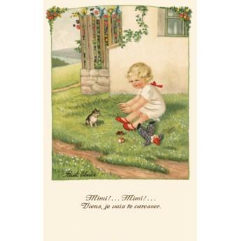 Postcard cat