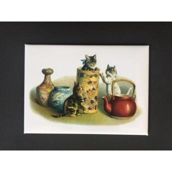 Magnet cat tea